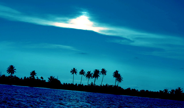 Alappuzha Backwaters In Kerala