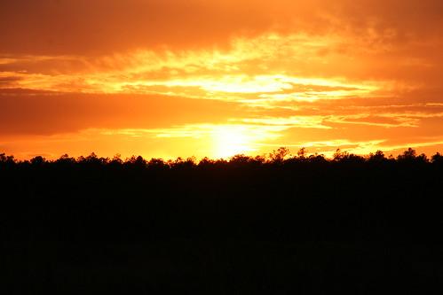 sunset nj pinelands pinebarrens burlingtoncounty