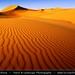 Iran - Dunes at Maranjob at Dasht-e Kavir Desert by © Lucie Debelkova / www.luciedebelkova.com