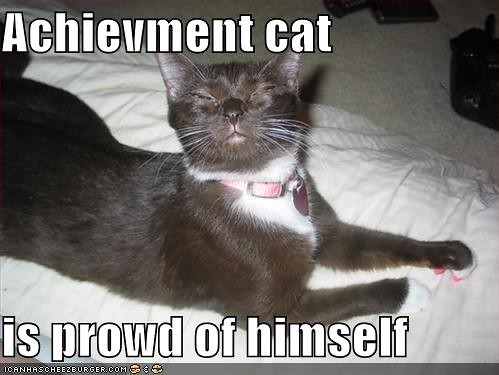 funny-pictures-proud-cat