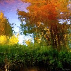 Far away in the depth of my wild river...!!! Au loin dans les profondeurs de ma rivière sauvage...!!!