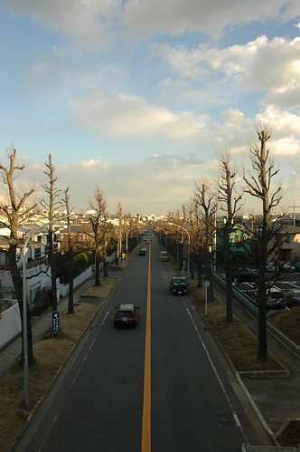 road plaza morning trees tree japan skyline landscape geotagged japanese spring nikon d70 bare tama nippon yokohama pachinko kanagawa tonkatsu nihongo kanagawaken tamaplaza pozland たまぷらーぜ geo:lat=3558359 geo:lon=139552175