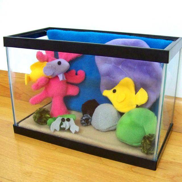Little fish tank Flickr - Photo Sharing!