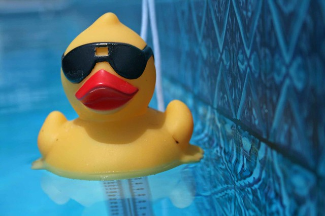 Rubber Duckie You 39 Re The One Flickr Photo Sharing