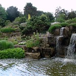 Cascatas em Kew Gardens / Waterfall at Kew Gardens