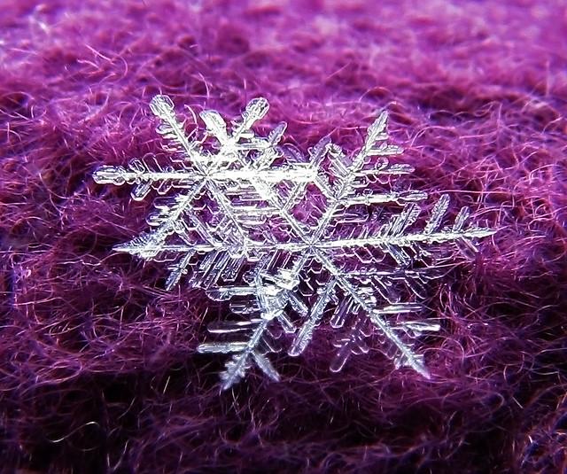 ~Nature's jewels~
