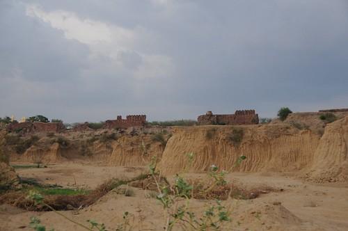 general wetlands madhyapradesh geo:dir=1174 june2008 geo:lat=26668215 geo:lon=77898965 bhanpur