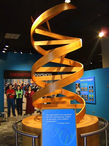 April 25 celebrates the DNA Model