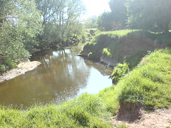 nature reserve, stream, river, bank, riparian forest, body of water, watercourse, waterway,