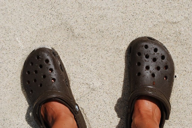 crocs @ Coki Beach