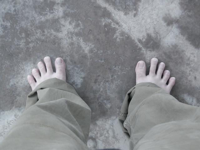 Monkey feet flickr photo sharing