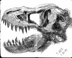 T-Rex 1-30-09