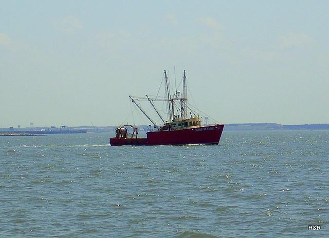 Fishing chesapeake bay flickr photo sharing for Fishing chesapeake bay