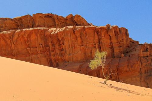 wadirum jordanie