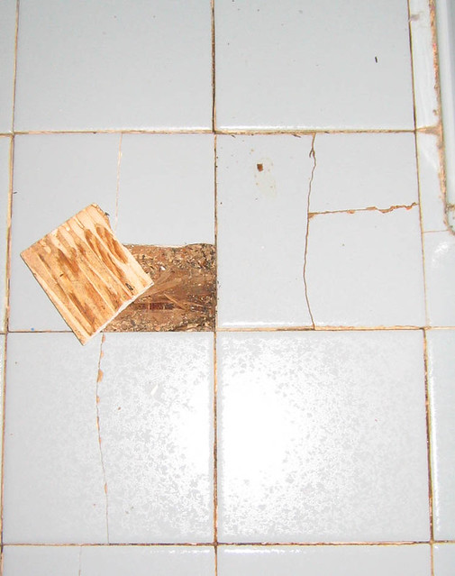Leaking bathroom floors, rotting floor underneath tiles, needs