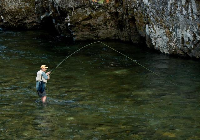 Keith fly fishing on the st joe river idaho flickr for St joseph river fishing