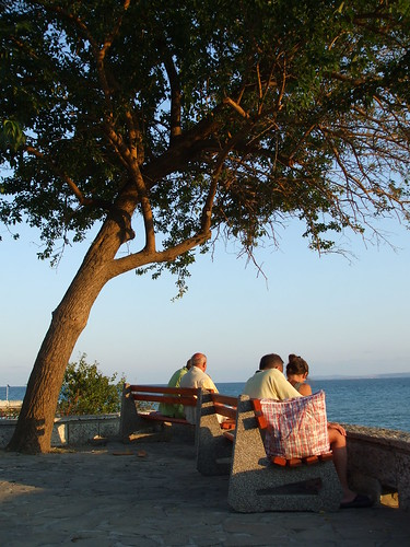 trees nice view bulgaria benches pomorie