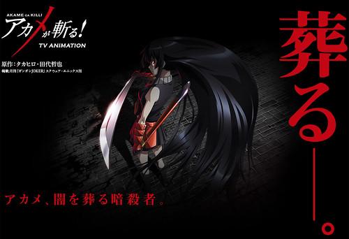 140307(3) - 魔幻暗殺連載《アカメが斬る!》(斬.赤紅之瞳!)將播出電視動畫、新海報&首支預告公開!