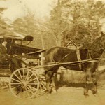 Casey Lady with Horse and Carriage, Wayne County, North Carolina