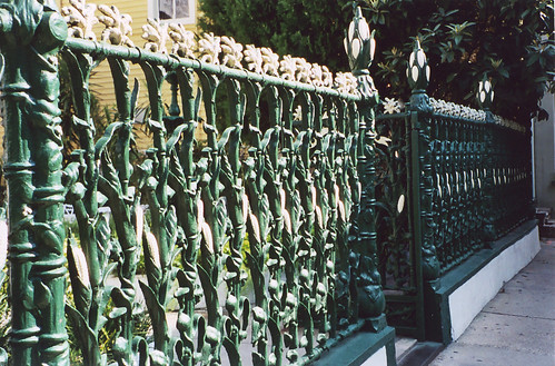 Corn Fence