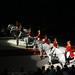 2008.02.10 : Lipizzaner Horse Show.
