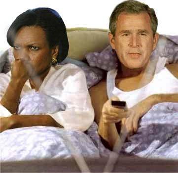 condi_bush_bed