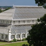 Temperate House em Kew Gardens / Temperate House at Kew Gardens