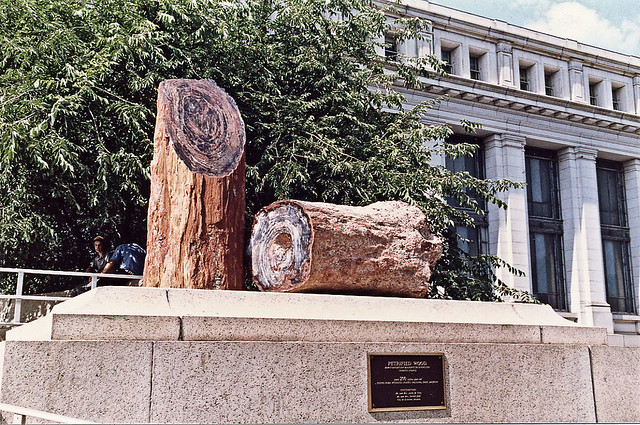Washington DC The Smithsonian Institution - Petrified Wood outside the ...