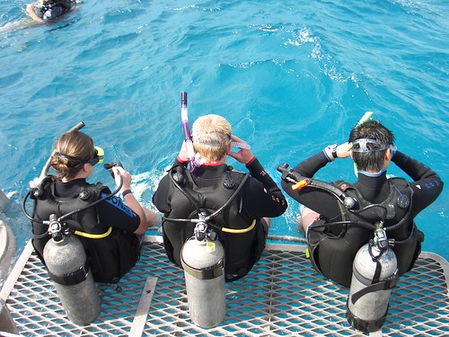 cairns australia diving