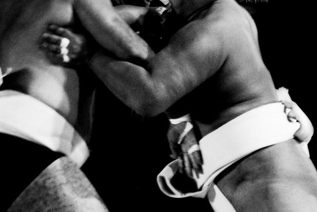 Sumo Wrestler Clash