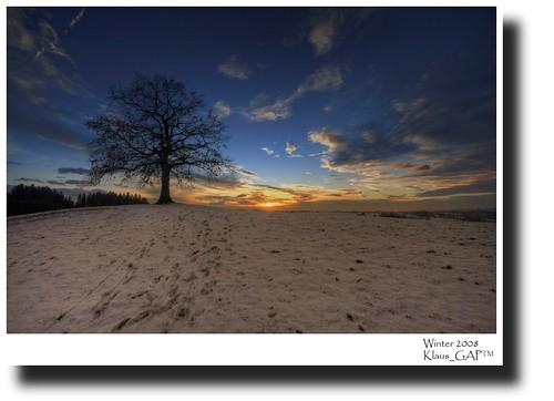 blue schnee sunset sky panorama snow tree clouds germany geotagged bayern deutschland bavaria sonnenuntergang hill himmel wolken baum hdr hdri münsing photomatix abigfave platinumphoto theunforgettablepictures goldstaraward