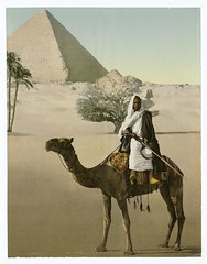 [Egypt.]