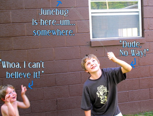 Junebug 3