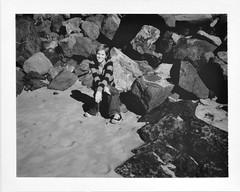 Polaroid 195
