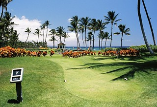 Golf Courses Area with Tropical View