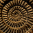 the Spirals, twists and curls group icon