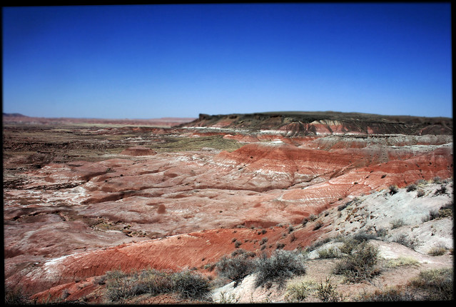 Painted Desert, Petrified Forest (3710)