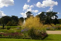 Trentham Gardens August 2008