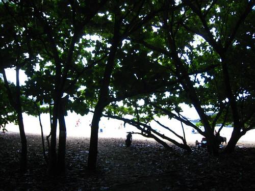 kauai IMG_5657