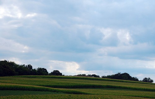 usa field geotagged unitedstates pennsylvania august pa 17 i80 milton 2008 picnik northhills interstate80 eastchillisquaque geo:lon=7680052732 geo:lat=4103138611