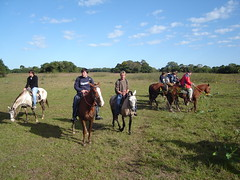 Horseback riding in Pantanal