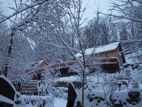 Schnee flatterte fast und geräuschlos wirbelte durch zog im Wachwitzgrund eine Gruppe baumgesäumte von Katzen gespurte, Seitenwege darunter der Schneemann und seine Gefährten  083
