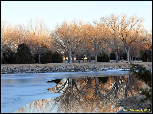 trees winter ice nature water glass beautiful reflections nikon nebraska colorful stunning eagles picnik d300 lakeogallala 7020028
