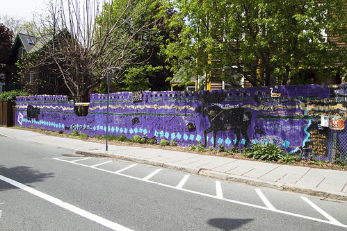 cosmic moose fence