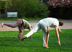 grass, yoga, physical fitness, lawn,