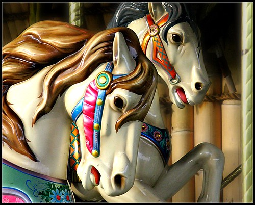 horses animals tampa zoo florida carousel fl merrygoround vob carouselanimals tampaslowryparkzoo picniik