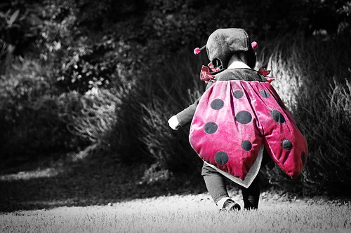 halloween costume almostbw ladybug selectivecolor