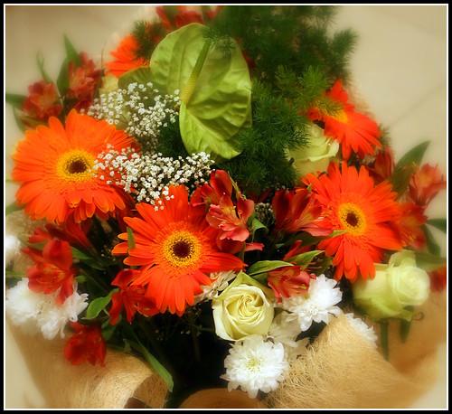 """Фотография: """"A bouquet """" Автор: JannaPham"""