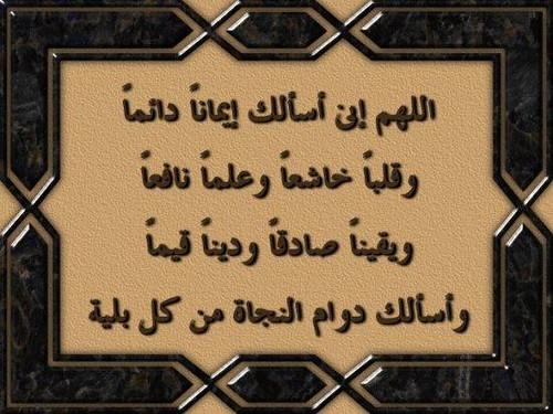 الدعاء مخ العبادة  2736334849_f1876b437d