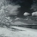 Thai Beach in Infrared